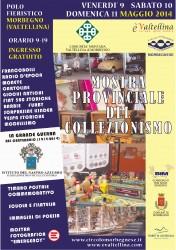 mostra_provinciale_del_collezionismo_morbegno